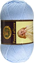 Lion Brand Pastel Blue Yarn Pound of Love
