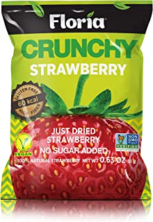 REV-Dried Strawberry Fruit Crisps, Healthy on-the-go Snack, 0.63 Ounce Single Serve Bags (Pack of 10), Real Crunchy Strawb...