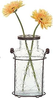 Creative Co-Op DE3875 Glass and Metal Vase, 10.5-Inch