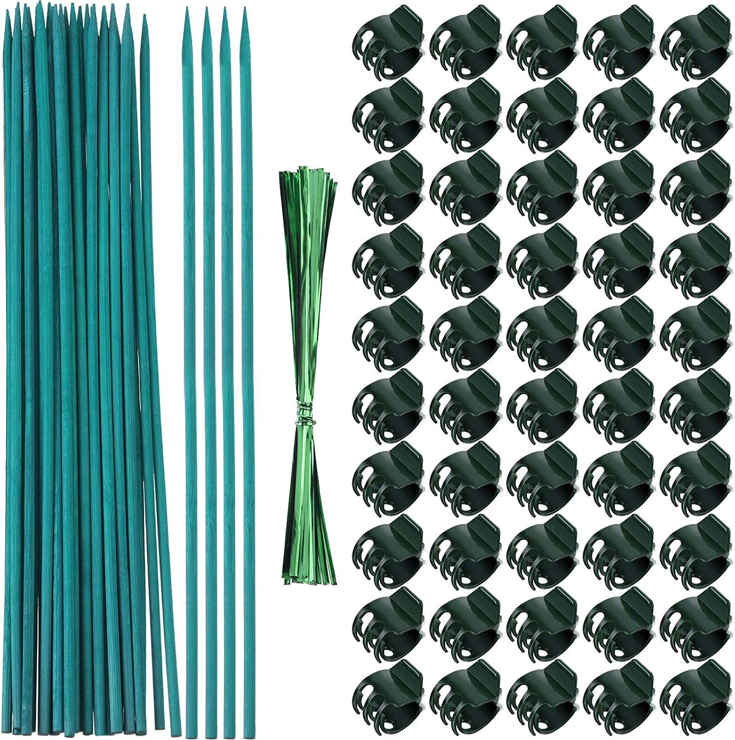 Jetec 50 Pieces Arlington Mall Purchase Orchid Clips Garden Plastic 30 with Plant
