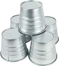 Best using galvanized buckets planters Reviews