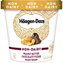 Haagen-Dazs Non-Dairy Peanut Butter Chocolate Fudge Frozen Dessert, 14 oz.