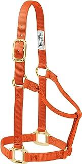 Best orange horse halter Reviews