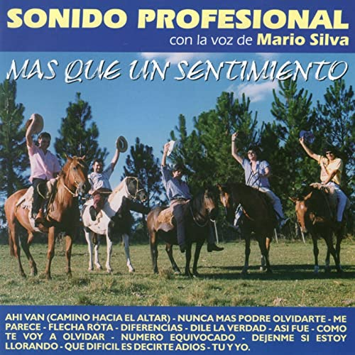 Flecha Rota de Sonido Profesional en Amazon Music - Amazon.es