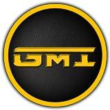 GMI LLC