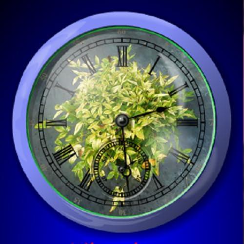 Cullen And Fox Plants 4 Sale Analogue Alarm Clock