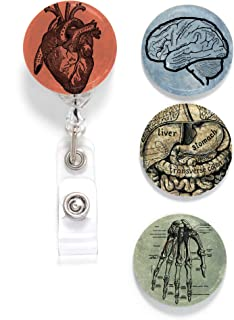 Buttonsmith Anatomy Tinker Reel Retractable Badge Reel - with Alligator Clip and Extra-Long 36 inch Standard Duty Cord - Made in The USA
