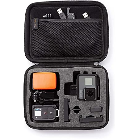 Amazon Com Amazon Basics Small Carrying Case For Gopro And Accessories 9 X 7 X 2 5 Inches Black Camera Photo