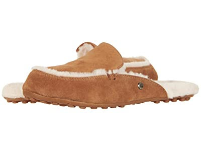 UGG Lane (Chestnut) Women