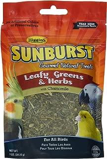 Higgins Sunburst Leafy Greens & Herbs Gourmet Treats All Birds