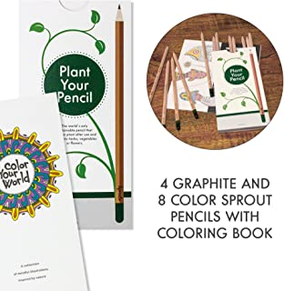 Sprout Pencils – Sprout Kid's Travel Edition Colour Kit | Plantable Biodegradable Graphite Pencils | Natural Sustainable Wood | Perfect for colouring books | Box of 12