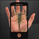 Scorpion on hand Camera prank