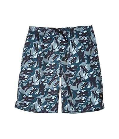 Vans Kids Mixed Volley (Big Kids) (Shark Camo) Boy