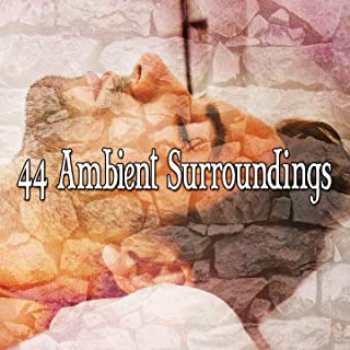 44 Ambient Surroundings