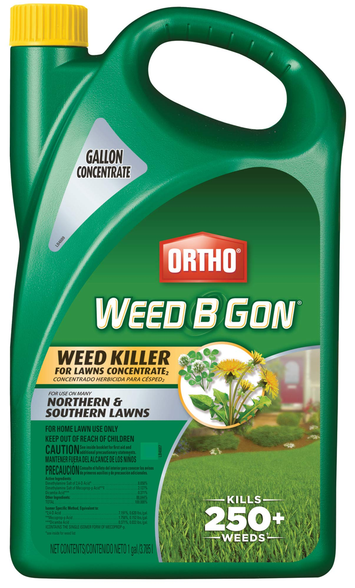 Ortho Killer Lawns Concentrate 1 Gallon