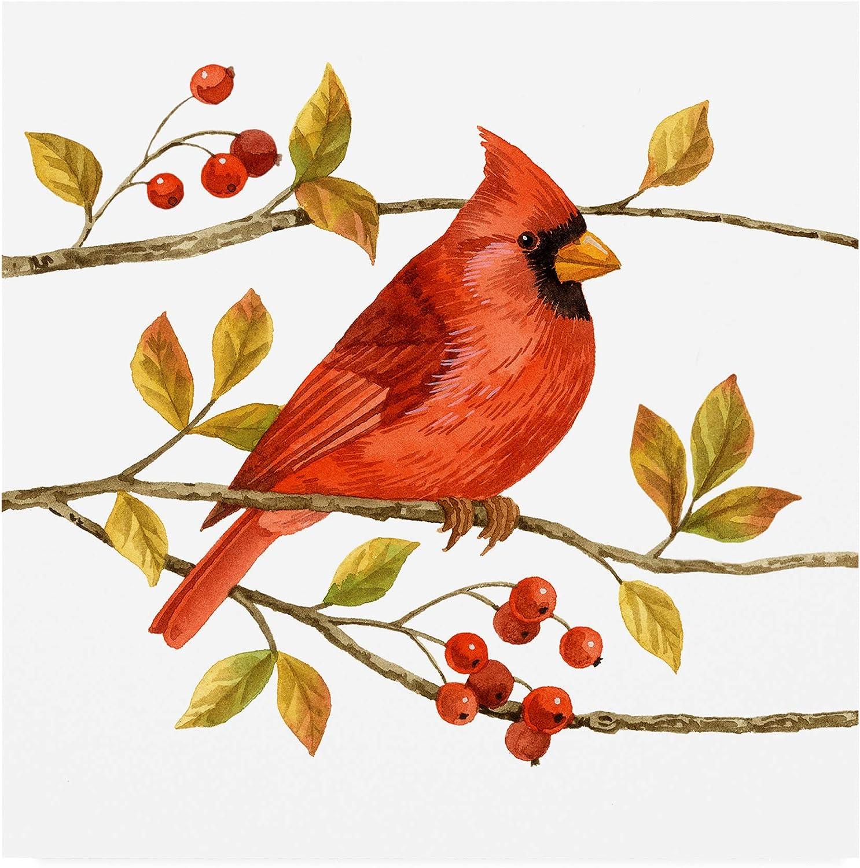 Trademark Fine Art Birds and Berries III by Jane Maday, 14x14