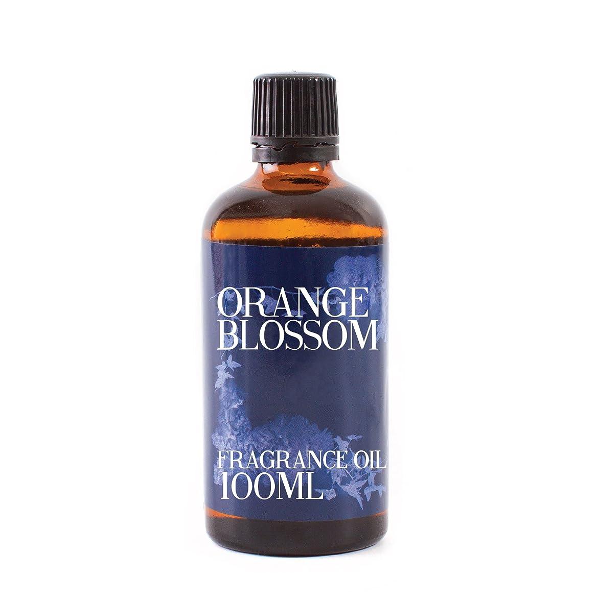 七時半ダム安定しましたMystic Moments | Orange Blossom Fragrance Oil - 100ml