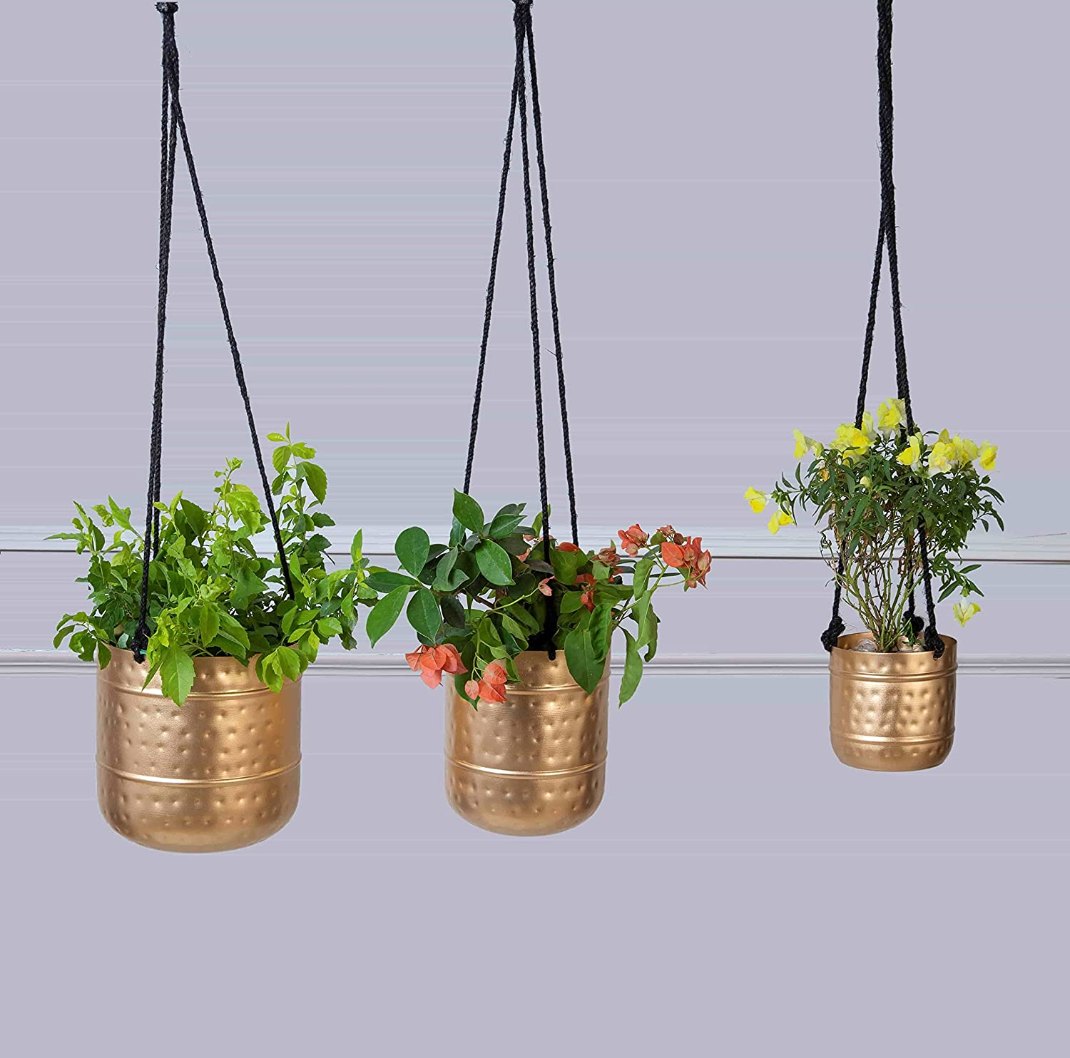 100% quality warranty! MytriDesigns Super sale Hammered Planter Pots Golden with R Antique Finish