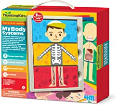 4M My Body Anatomy Science Kit