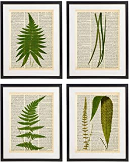 IDIOPIX Fern Art Prints Vintage Botanical Wall Art Set of 4 Prints UNFRAMED No.9