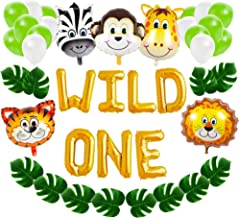 Wild One First Birthday Balloon Decoration Kit, 1st Boy Girl Theme Bday Party Banner Decoration Set