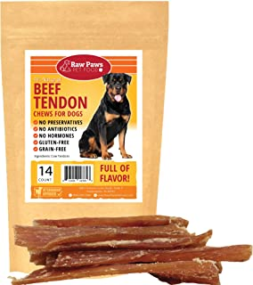 Raw Paws 6-inch Beef Tendons for Dogs - Large Beef Tendon Dog Treats - Packed in USA - Free-Range, Grass-Fed Premium Beef Backstrap Chews - No Antibiotics, Added Hormones or Preservatives