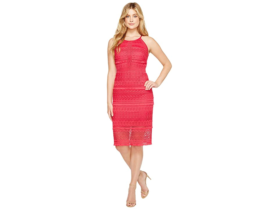 Laundry by Shelli Segal Fringe Venise Dress with Lace Inserts (Bright Rose) Women