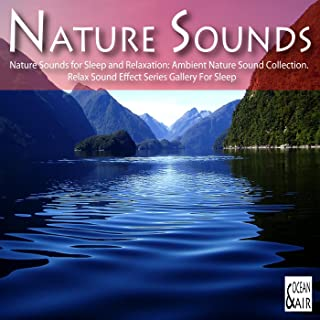 Nature Sounds for Sleep and Relaxation: Ambient Nature Sound Collection. Relax Sound Effect Series Gallery For Sleep
