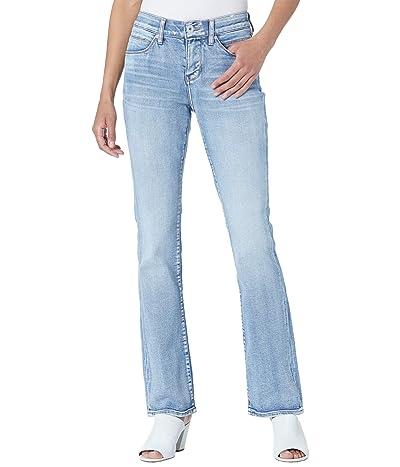 Jag Jeans Eloise Bootcut