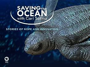 Saving the Ocean with Carl Safina