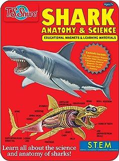 T.S. Shure Shark Science & Anatomy Educational Magnets Tin
