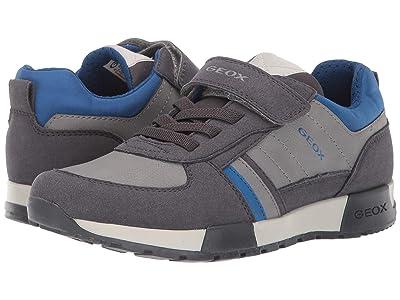 Geox Kids Jr Alfier 7 (Big Kid) (Dark Grey/Royal) Boys Shoes
