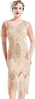 1920s Art Deco Fringed Sequin Dress 20s Flapper Gatsby Costume Dress