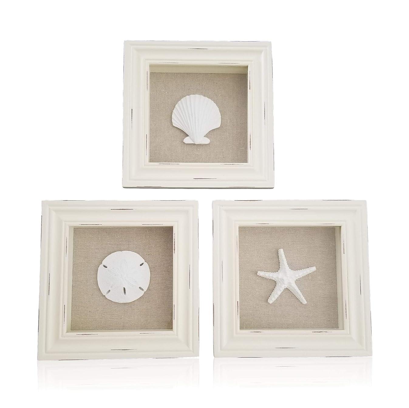 Tumbler Home Custom Set of 3 Shell Shabby Chic Shadow Boxes- Off White Frame 7