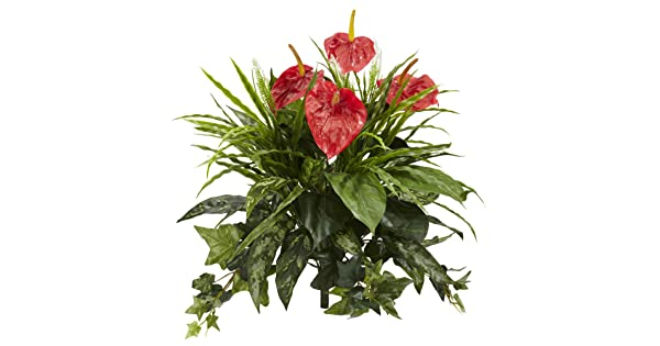 """Artificial Plant Red Set of 2 Nearly Natural 6072-S2 24/"""" Mixed Anthurium"""