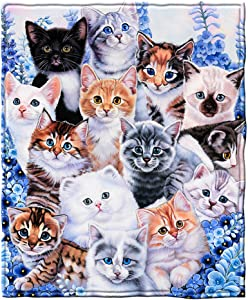 Dawhud Direct Kitten Collage Super Soft Plush Fleece Throw Blanket by Jenny Newland