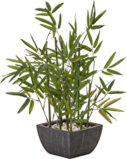 Cooper & Co. Homewares Potted Bamboo Artificial Home Decor Fake Plant, 46 cm Height Green (TU246W)