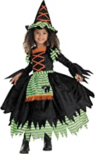 Story Book Witch Costume Size: 2T