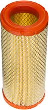 Champion CAC9269 Conical/Radial Air Filter