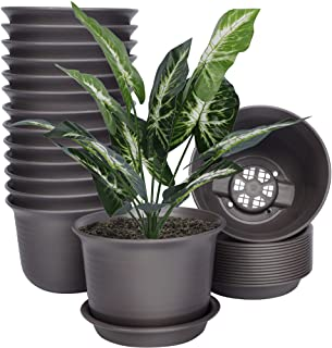 SAND MINE 15 Pack Plant Pots, 6 inches Plastic Pots for Plants, Plastic Planter, Flower Pot with Drainage Hole and Tray, P...