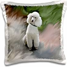 3dRose White Poodle-Pillow Case, 16-inch (pc_4028_1)