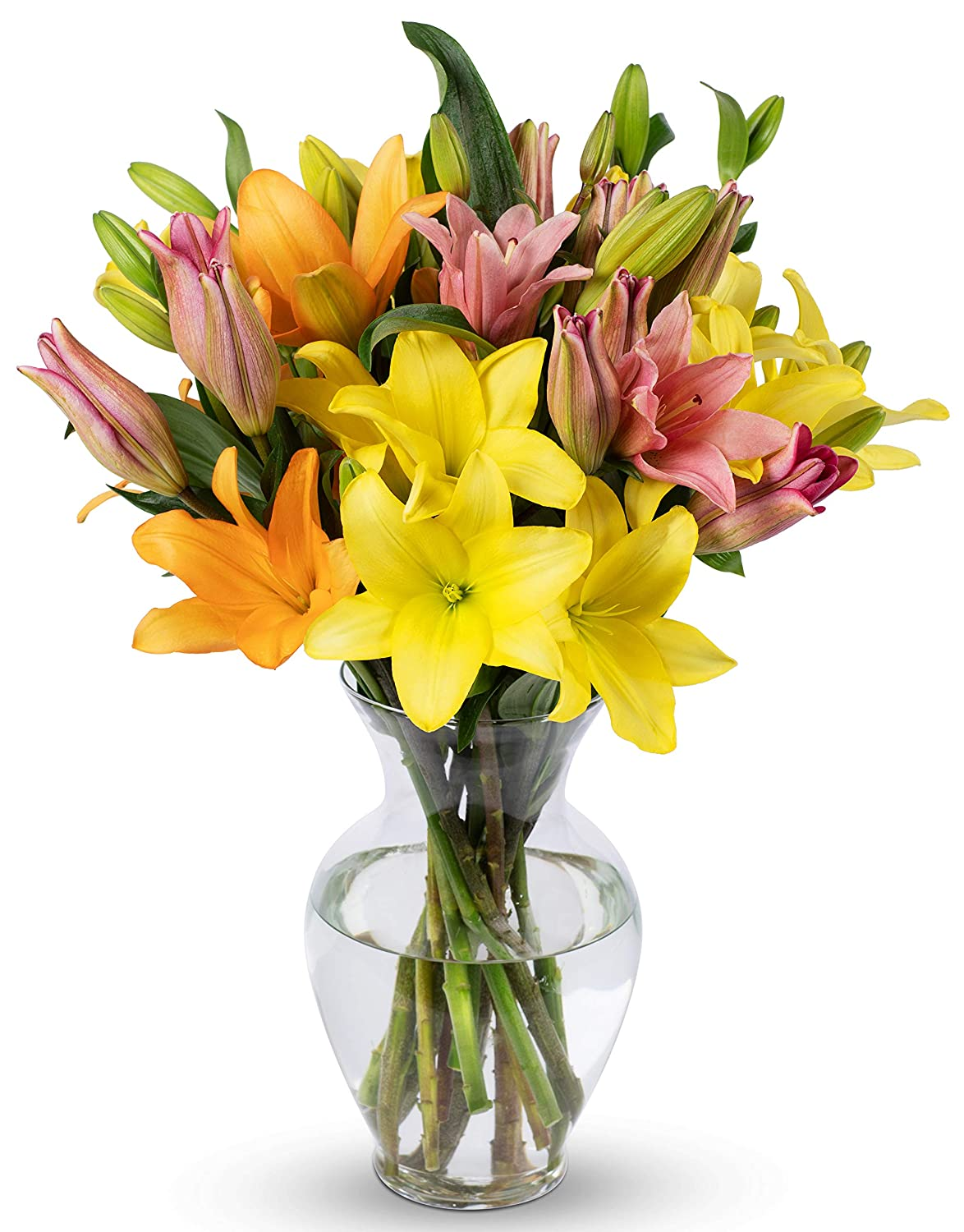 Free shipping / New Benchmark Bouquets 12 Stem mart Assorted Asiatic F With Lilies Vase