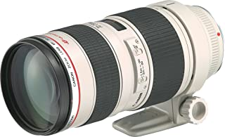Canon 望遠ズームレンズ EF70-200mm F2.8L USM フルサイズ対応