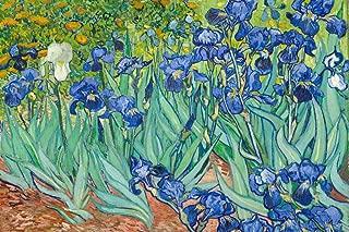 Vincent Van Gogh Irises 1890 Dutch Post Impressionist Landscape Painting Cool Wall Decor Art Print Poster 18x12