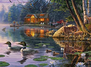 Buffalo Games - Darrell Bush - Early Reflections - 1000 Piece Jigsaw Puzzle