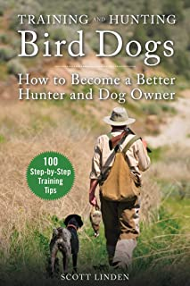 Hunting Dogs For Birds