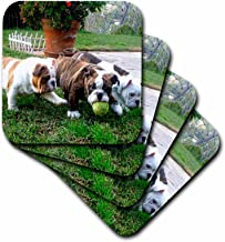 3dRose CST_60013_1 English Bulldogs Play Ball Soft Coasters, Set of 4