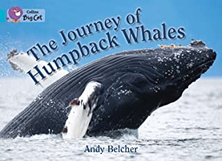 The Journey of Humpback Whales: Band 07/Turquoise (Collins Big Cat) (English Edition)