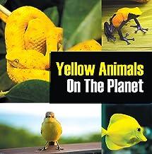 Yellow Animals On The Planet: Animal Encyclopedia for Kids (Colorful Animals on the Planet Book 4) (English Edition)