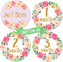 Baby Girl Monthly Milestone Stickers | Set of 20 Floral Gold Stickers | Birth to 12 Months + 8 Bonus Achievement Stickers | Baby Shower Gift for Baby Girl